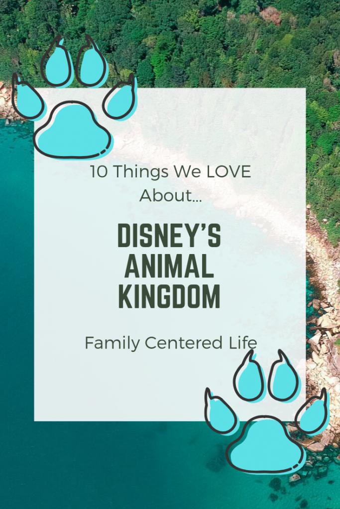 top 10 things at Animal Kingdom