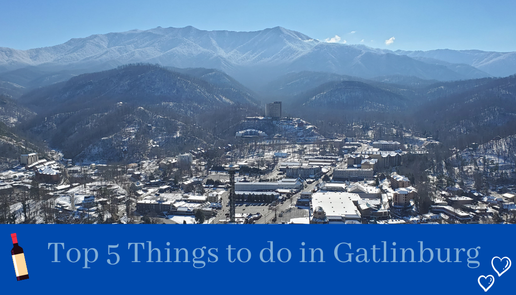 family fun in Gatlinburg, TN