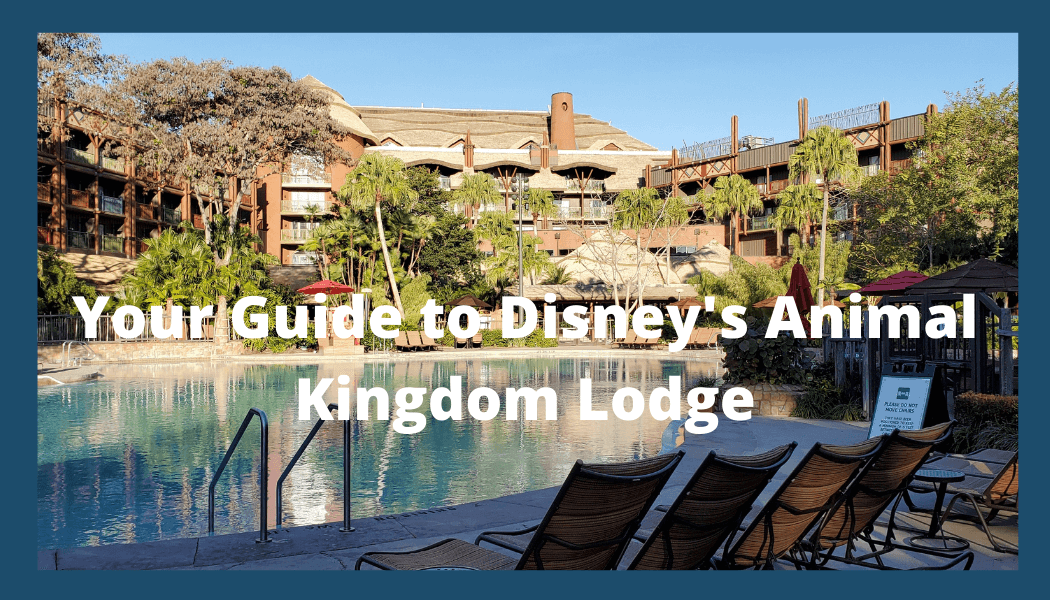 what is there to do at Animal Kingdom Lodge